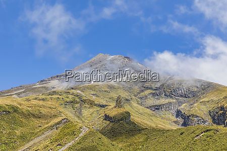 new zealand low angle view of