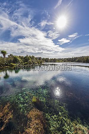 new zealand tasman region takaka sun
