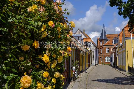 denmark jutland ribe old town alley