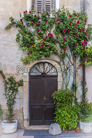 italy province of verona lazise potted
