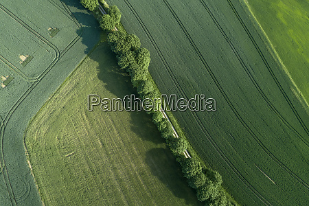 germany thuringia aerial view of treelined