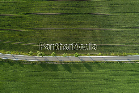 germany bavaria aerial view oftreelinedroad stretching