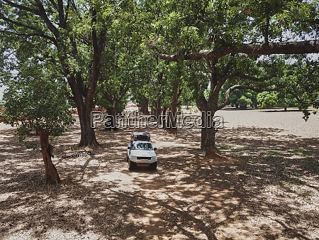 burkina faso 4x4 car on tree
