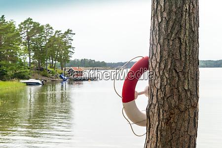 life belt hanging on tree trunk
