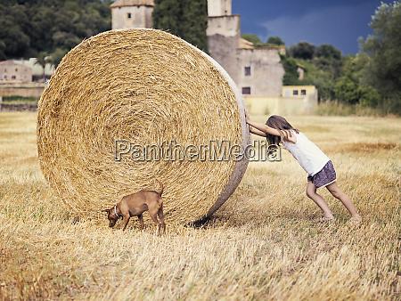 little girl rolling hay bale
