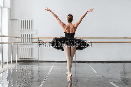 graceful ballerina dance in ballet