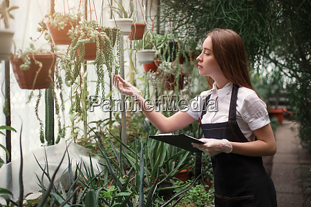 florist take care of home flowers