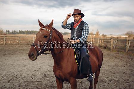 cowboy riding a horse on a
