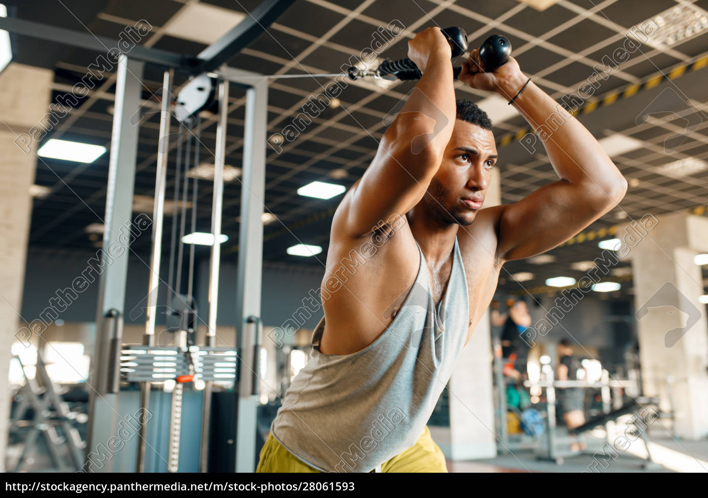athlete, at, exercise, machine, in, motion, - 28061593