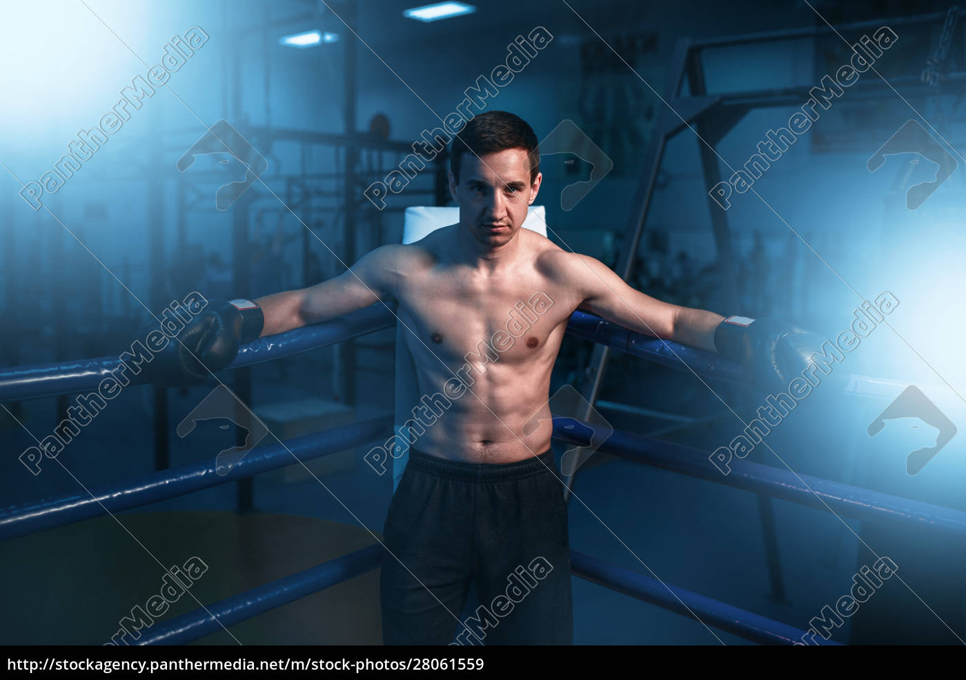 boxer, in, black, gloves, in, the - 28061559