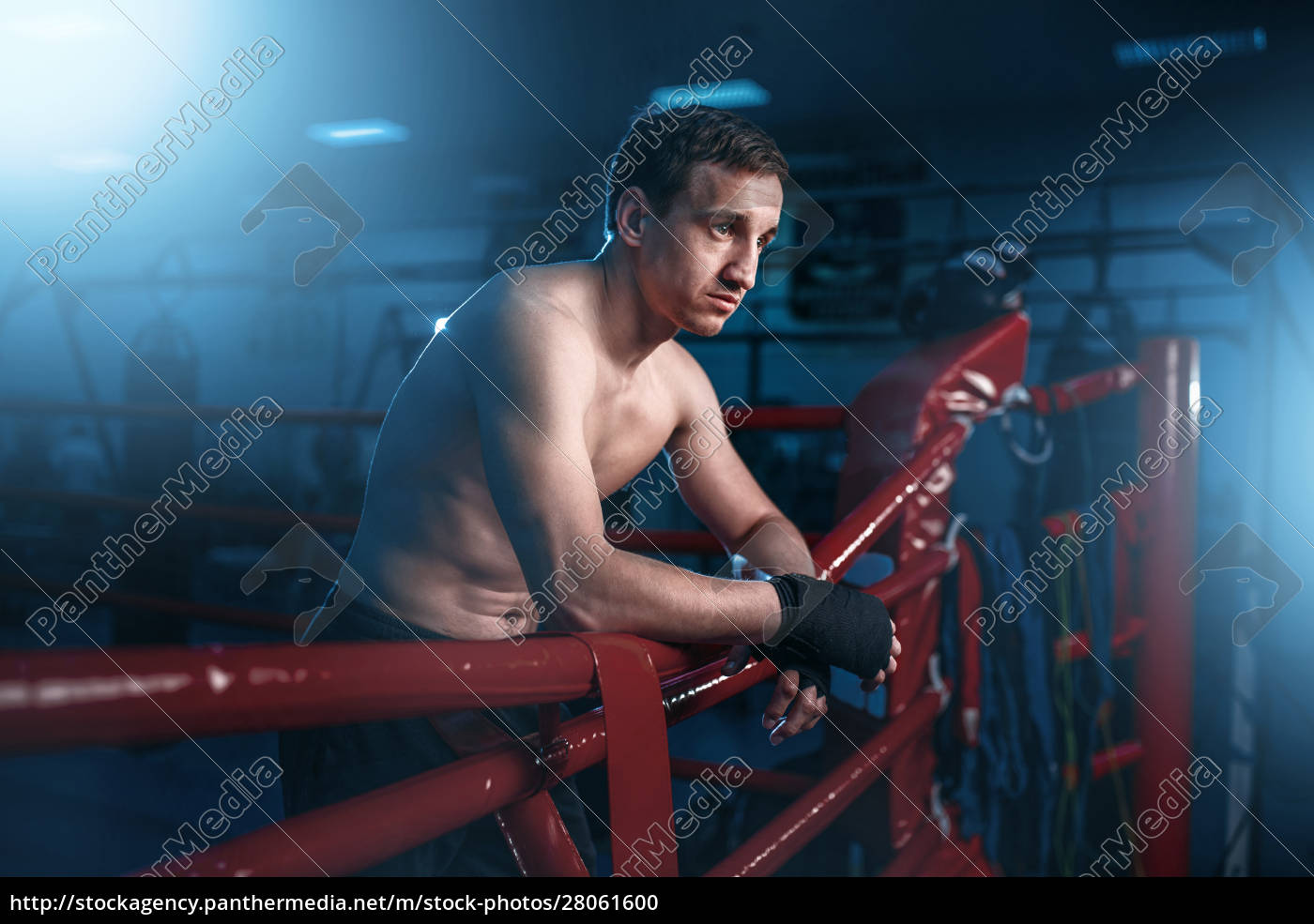 boxer, in, black, handwraps, poses, on - 28061600