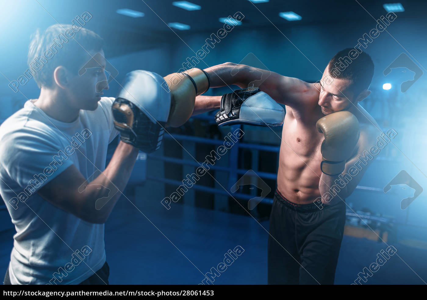 boxer, in, gloves, exercises, with, personal - 28061453