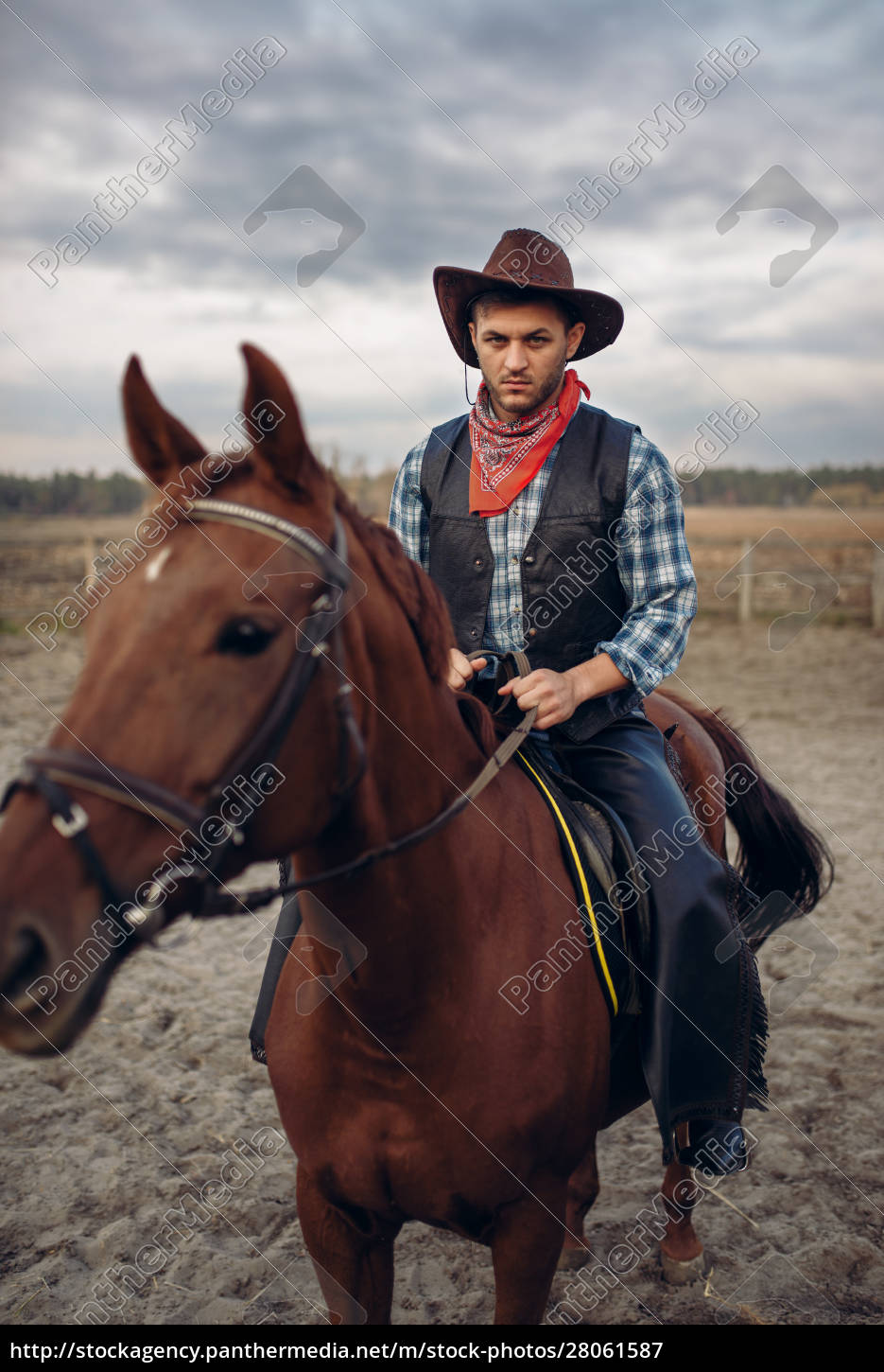 cowboy, in, leather, clothes, riding, a - 28061587