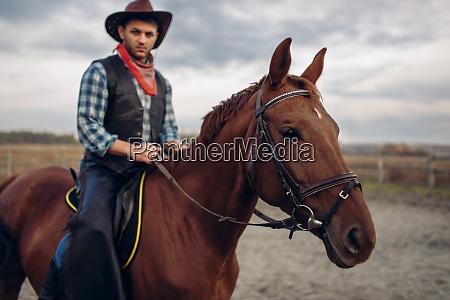 cowboy, riding, a, horse, in, desert - 28061608
