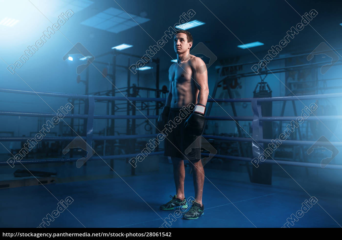 muscular, boxer, in, black, gloves, on - 28061542