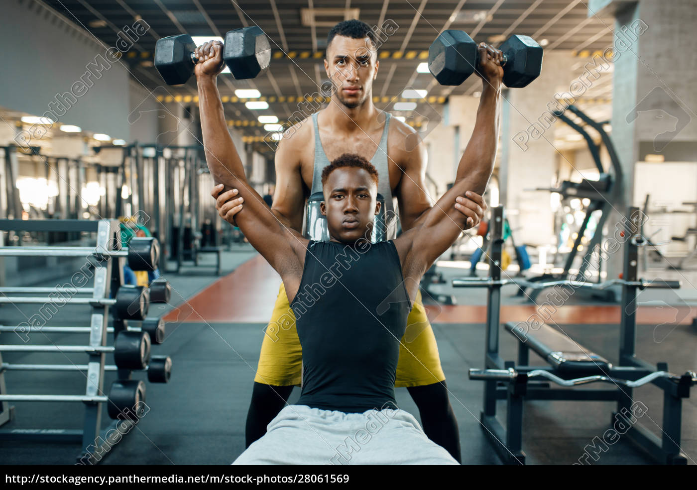 two, men, doing, exercise, with, dumbbells - 28061569