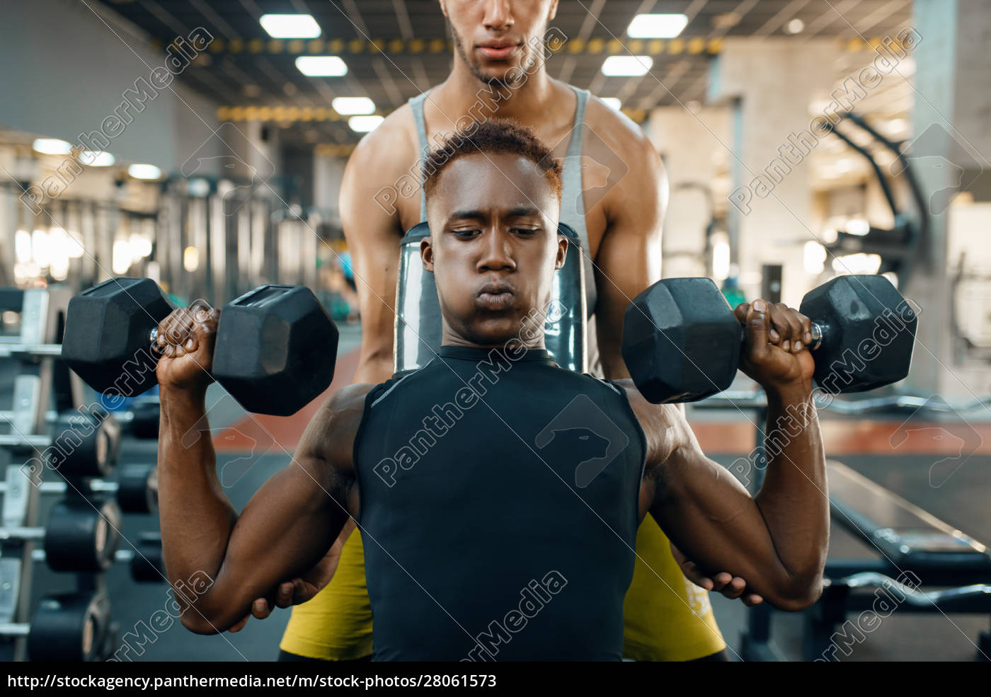 two, men, doing, exercise, with, dumbbells - 28061573