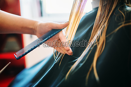 female beautician runs the comb hairdressing