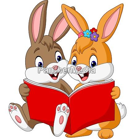 cartoon, couple, of, rabbits, reading, a - 28062287