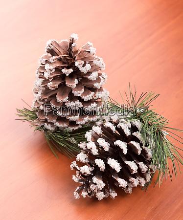 fir, cones - 28062098