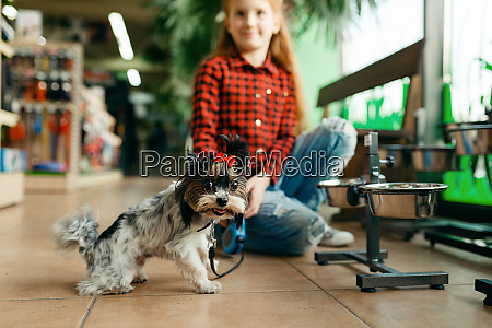 little, girl, looking, clothes, for, dog - 28062951