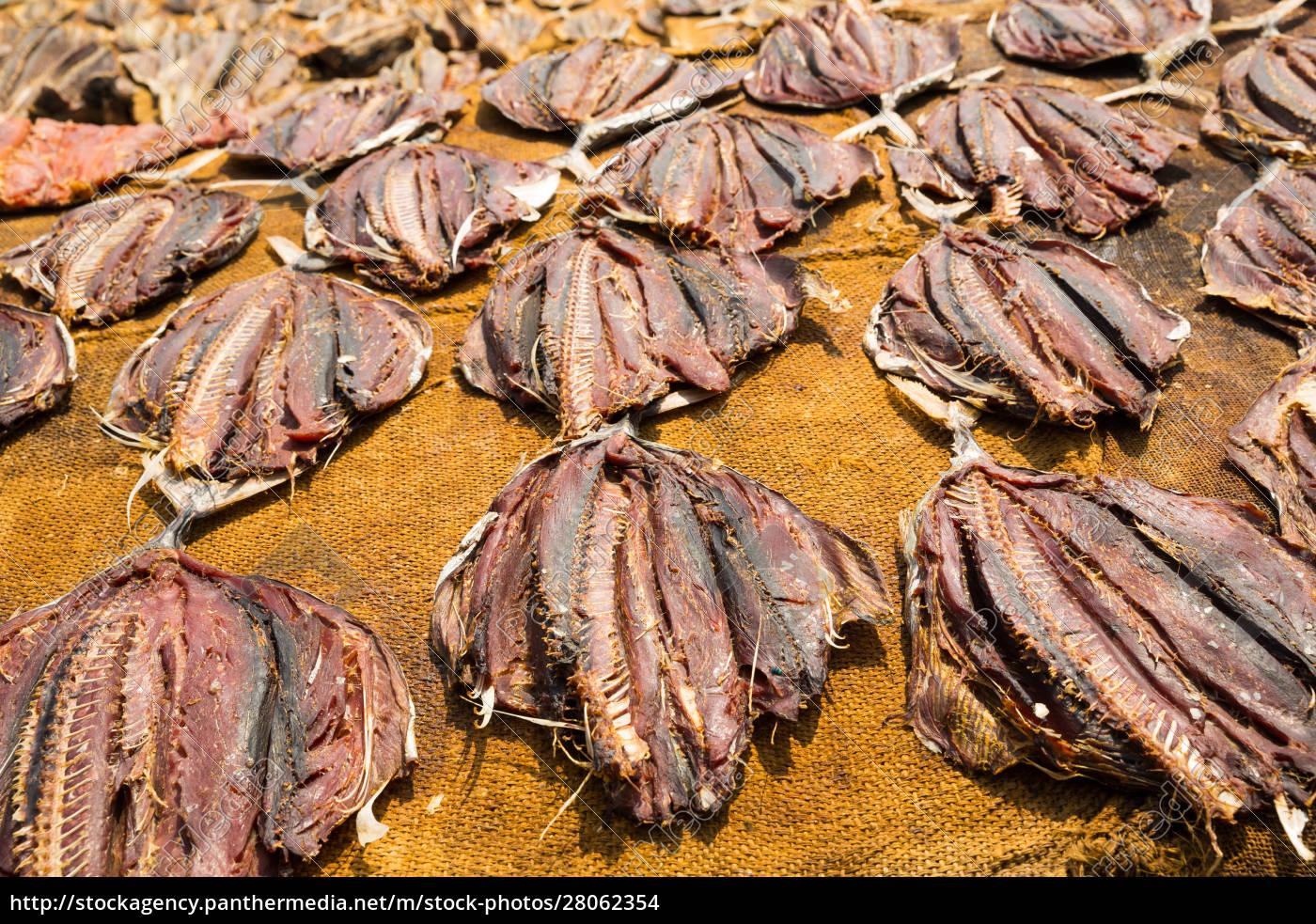 tuna, drying, process, on, the, coast - 28062354