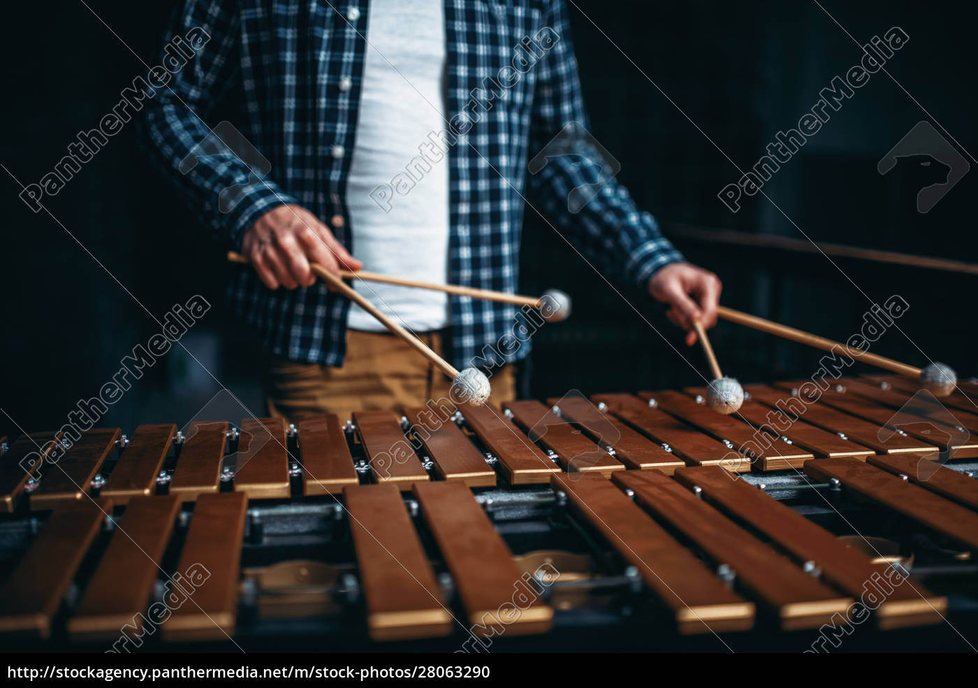 xylophone, player, hands, with, sticks, , wooden - 28063290