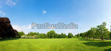 fresh meadow landscape