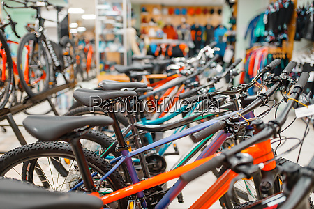 rows of bicycles in sports shop