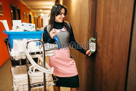 housemaid in uniform finished cleaning the