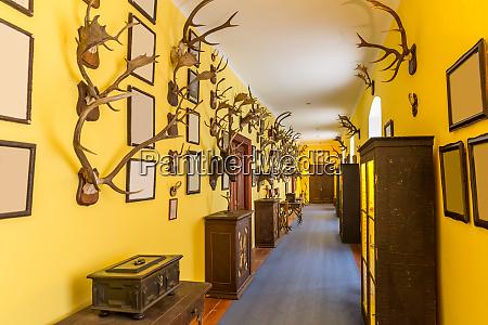hall, of, trophies, , deer, antlers, , european - 28082609