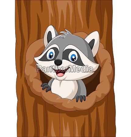 cartoon raccoon sitting in hollow of