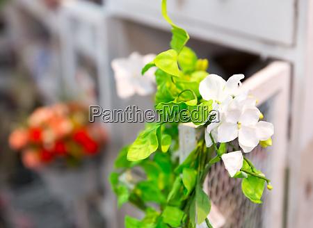 beautiful liana of bright flowers