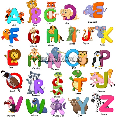 animals alphabet set on white background