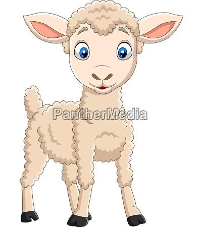 cartoon happy lamb isolated on white