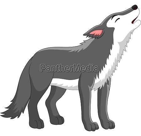 cartoon wolf howling on white background