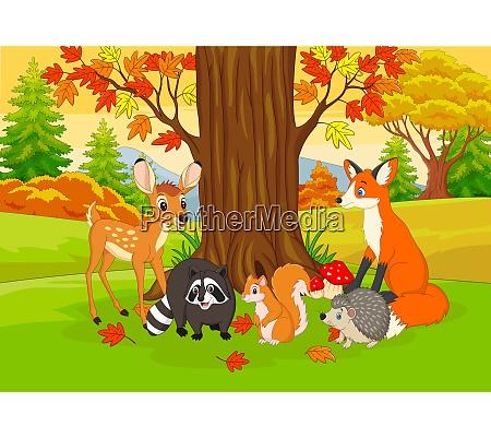 cartoon wild animals in the autumn