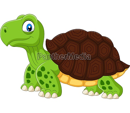 cartoon funny turtle isolated on white