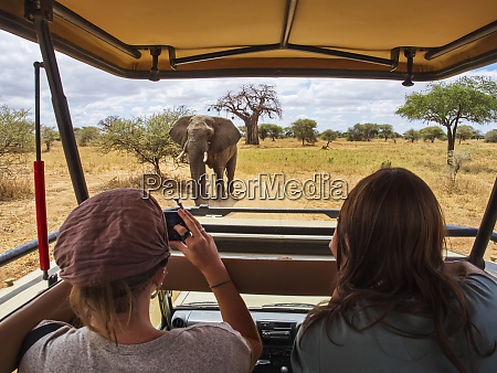 female tourists view and photograph an