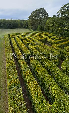old labyrinth at dawn klein zundert