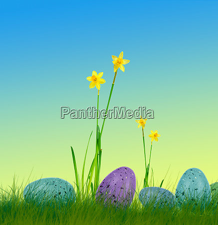 easter eggs on grass with daffodils