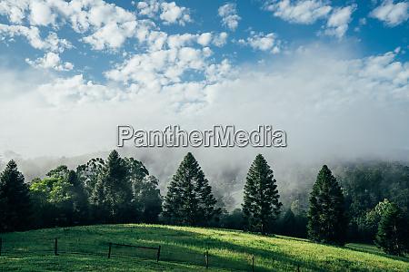 tranquil scene fog break over sunny