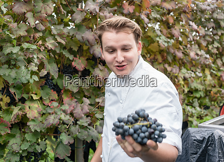 chef visiting vineyard being satisfied with