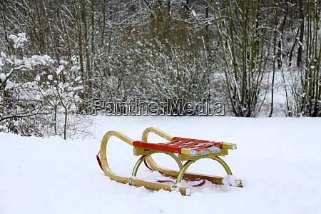 winer snow forest sledge