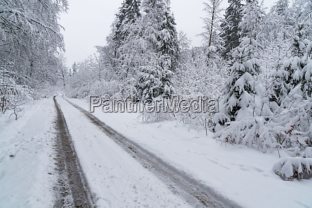 snowy road with tyres tracks in
