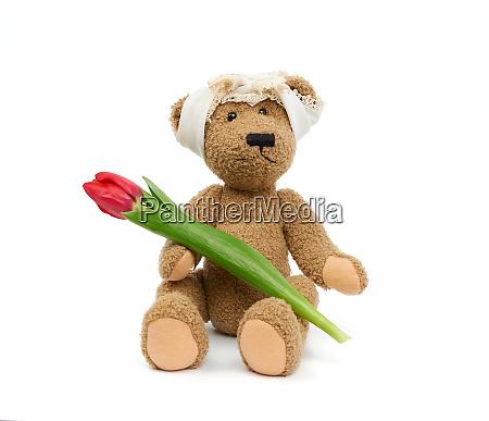 vintage cute brown teddy bear holds