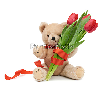 cute brown teddy bear holds in