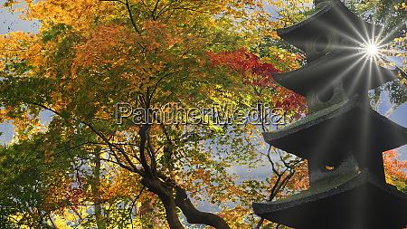 kanazawa ishikawa japan fall season at