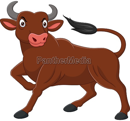 cartoon angry bull isolated on white