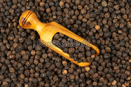 spice background background made of many